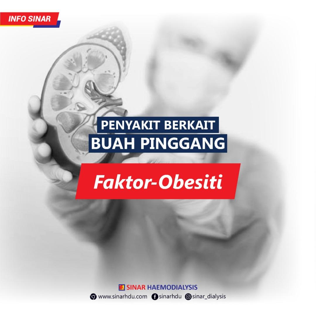 PENYAKIT BERKAIT BUAH PINGGANG BAHAGIAN 1 : Faktor - Obesiti